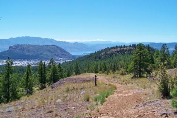 37. Barely discernible trail, Bitterroot Loop, Rose Valley Regional Park
